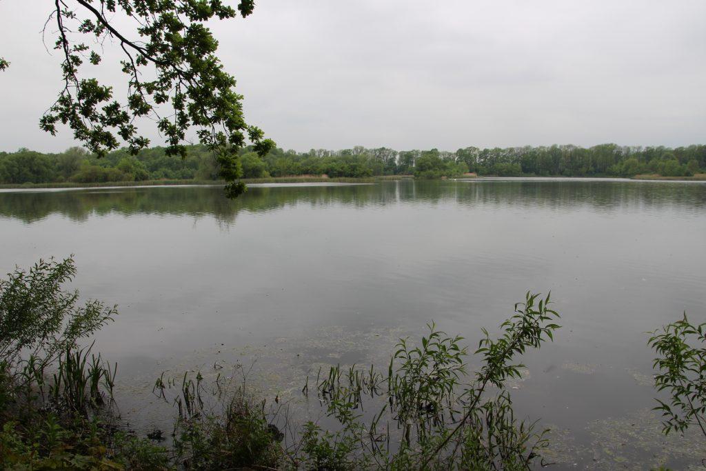 Bartošoviské rybníky
