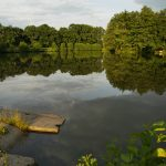 Milíčovské rybníky