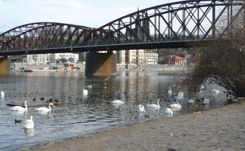Vltava v centru Prahy