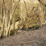 Radotínský potok