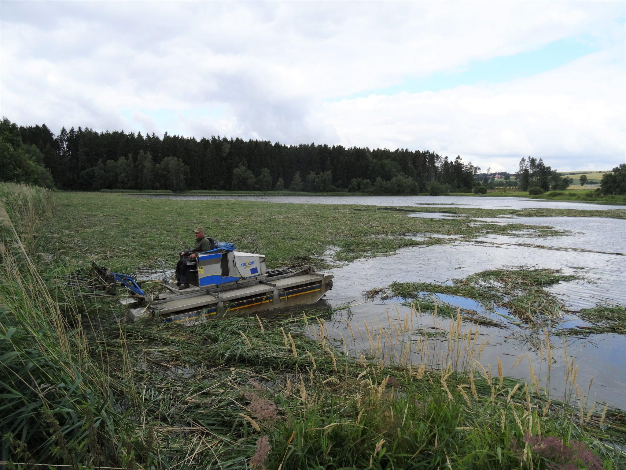 rybníkářství