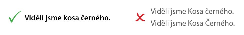 Čeština - názvy druhů píšeme s malými písmeny.