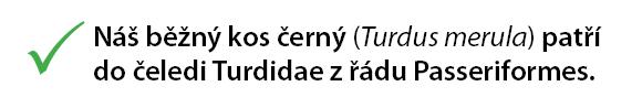 Čeština - vědecké názvy řádů a čeledí píšeme s velkým písmenem.